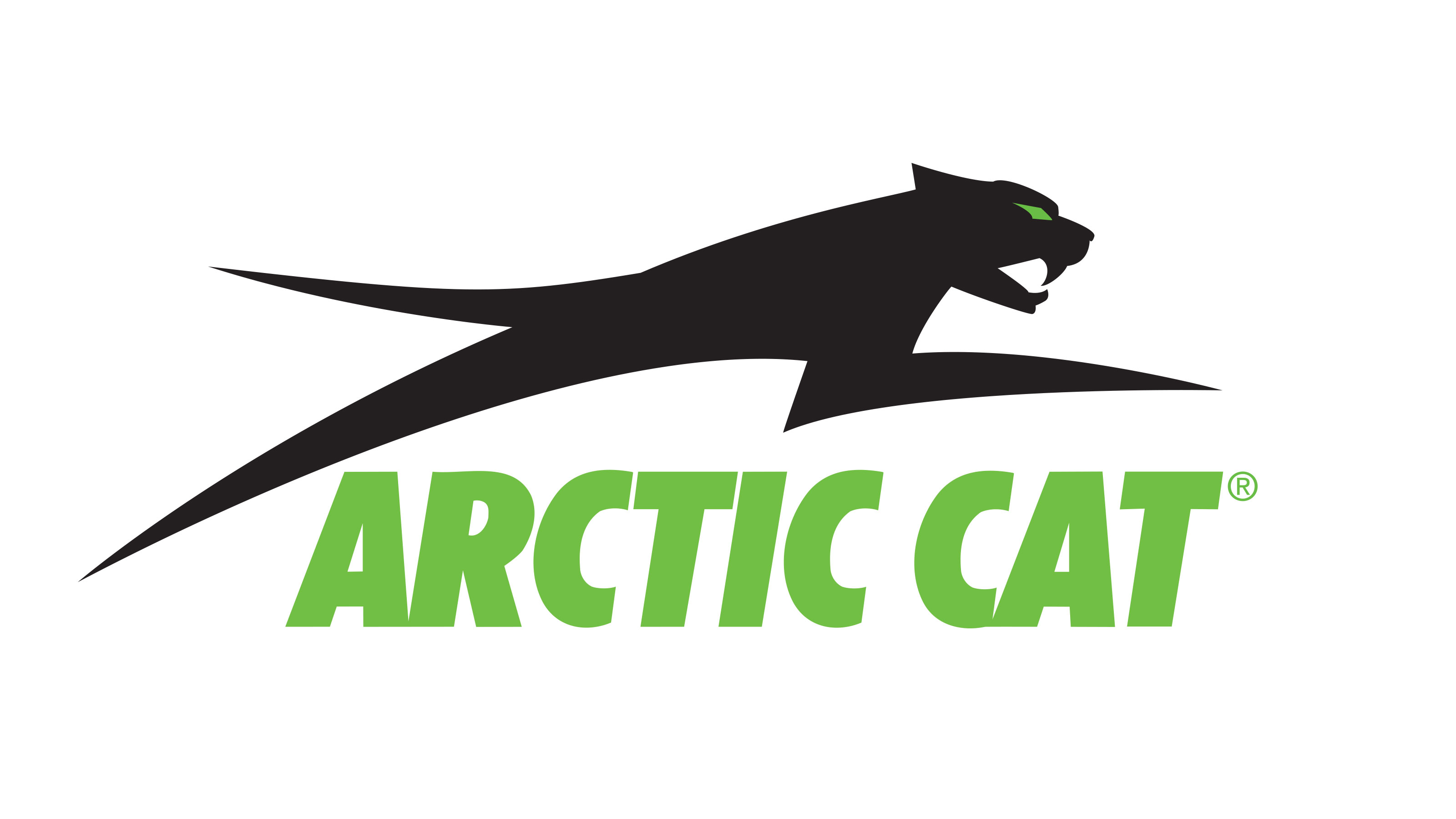 Image result for arctic cat logo