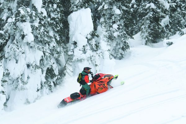 MY 2022  Arctic Cat Good Time to Buy Anytime!